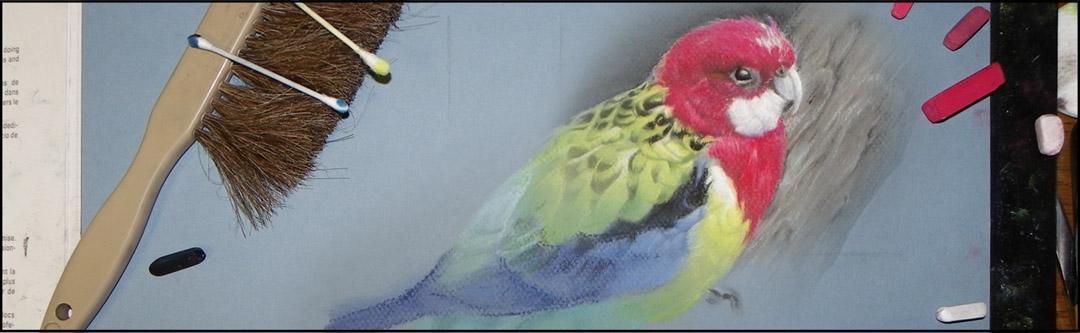 Wildlife in Pastels with Markus Leydolt