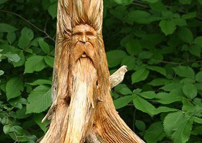 Old Man (carved, pine root) by Bill van Koot