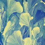 KAN Class - RoseMarie Condon - Intuitive Painting - Swish 3