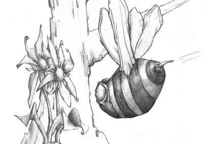 M-J Kelley - Beeline (pencil)