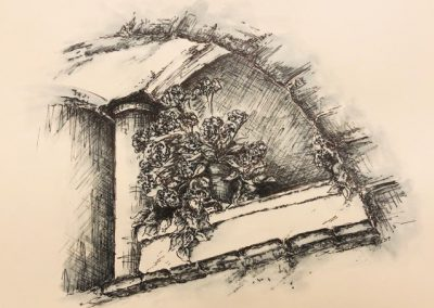 Lesley Drummond - Juliet (ink on paper)