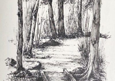 Lesley Drummond - Mum's Trail (ink on paper)