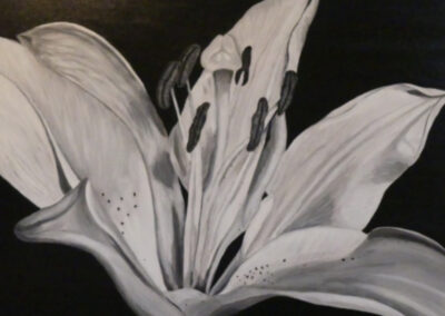 Barb Callaghan - Midnight Lily