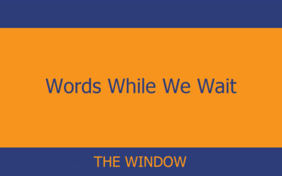 Words While We Wait – The Window